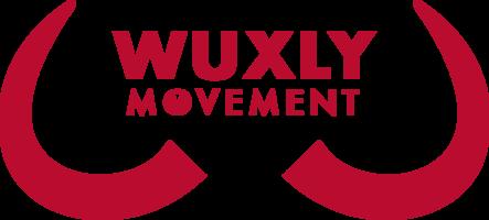 Wuxly-Logo-2018-red_x100@2x